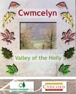 Cwmcelyn cover